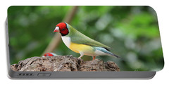 Red Headed Gouldian Finch Portable Battery Charger