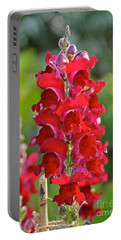 Portable Battery Charger featuring the photograph Red Snapdragon by Carol  Bradley