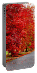 Red Leaf Road Portable Battery Charger