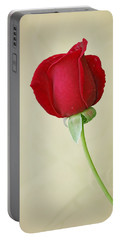 Red Rose On White Portable Battery Charger by Sandy Keeton