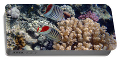 Red Sea Beauty 5 Portable Battery Charger
