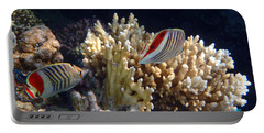 Red Sea Beauty 2 Portable Battery Charger