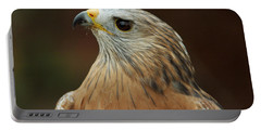 Portable Battery Charger featuring the photograph Red-shouldered Hawk by Doug Herr
