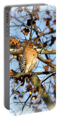 Red-shouldered Hawk - Img_7943 Portable Battery Charger by Travis Truelove
