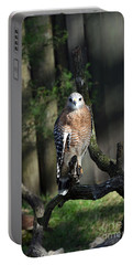 Red Shouldered-hawk Portable Battery Charger by Robert Meanor