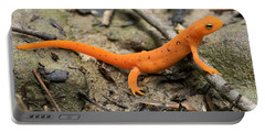 Red-spotted Newt Portable Battery Charger