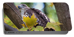 Red Tail Hawk Closeup Portable Battery Charger by Eleanor Abramson