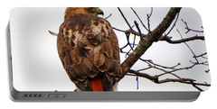 Red Tail Hawk In Winter Portable Battery Charger
