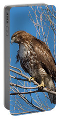 Red-tailed Hawk Watching The Ducks Portable Battery Charger