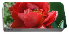 Portable Battery Charger featuring the photograph Red Tulip by Vesna Martinjak