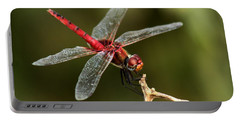 Red-veined Darter  - My Joystick Portable Battery Charger