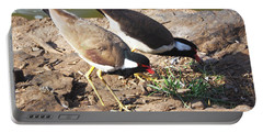 Red-wattled Lapwing Portable Battery Charger by C H Apperson