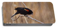 Red Winged Blackbird 1 Portable Battery Charger
