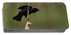 Red Winged Blackbird 3 Portable Battery Charger