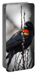Portable Battery Charger featuring the photograph Red Winged Blackbird In Pussy Willows by Patti Deters