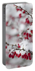 Red Winter Berries Under Snow Portable Battery Charger