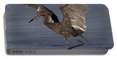 Reddish Egret Fishing Portable Battery Charger by Meg Rousher
