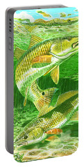 Redfish Haven In0018 Portable Battery Charger