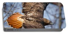 Redtail Hawk Square Portable Battery Charger