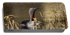 Redthroated Loon Portable Battery Charger