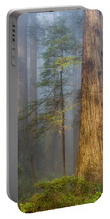 Redwoods In The Blue Mist Portable Battery Charger