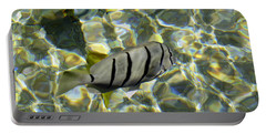 Reflection Fish Portable Battery Charger