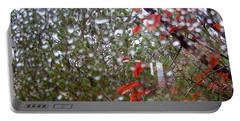 Reflections Of Rain Portable Battery Charger