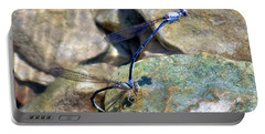 Refueling Dragonflies Portable Battery Charger