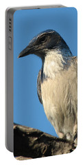 Regal Western Scrub Jay Portable Battery Charger