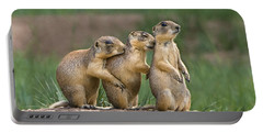 Portable Battery Charger featuring the photograph Relaxing Utah Prairie Dogs Cynomys Parvidens Wild Utah by Dave Welling