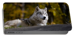 Portable Battery Charger featuring the photograph Resting Arctic Wolf On Rocks by Wolves Only