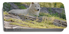 Portable Battery Charger featuring the photograph Resting Arctic Wolf by Wolves Only