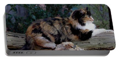 Resting Calico Cat Portable Battery Charger