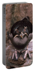 Rhinoceros Auklet Portable Battery Charger