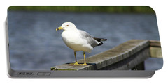 Portable Battery Charger featuring the photograph Ring-billed Gull by Alyce Taylor