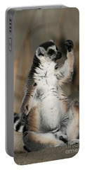 Portable Battery Charger featuring the photograph Ring-tailed Lemur by Judy Whitton