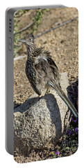 Roadrunner Warming In Sun Portable Battery Charger