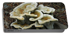 Portable Battery Charger featuring the photograph Roadside Treasure by Chalet Roome-Rigdon