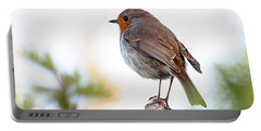 Robin On A Pole Portable Battery Charger
