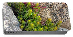 Portable Battery Charger featuring the photograph Rock Flower by Meghan at FireBonnet Art