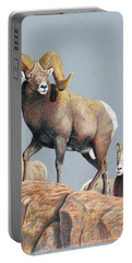 Rocky Mountain Ram Ewe And Lamb Portable Battery Charger