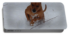 Portable Battery Charger featuring the photograph Romp In The Snow by Mim White