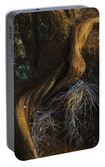 Portable Battery Charger featuring the photograph Tree Root by Yulia Kazansky