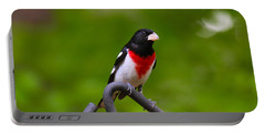 Rose Breasted Grosbeak Portable Battery Charger