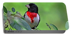Rose Breasted Grosbeak Portable Battery Charger by Rodney Campbell