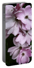 Portable Battery Charger featuring the photograph Rose Cluster by Louise Kumpf