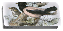 Rose Coloured Starling Portable Battery Charger by English School