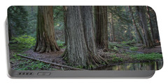 Ross Creek Old Growth Cedar Trees - Montana Portable Battery Charger