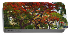 Royal Poinciana Trees Blooming In South Florida Portable Battery Charger