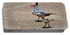 Royal Tern With Chick Portable Battery Charger
